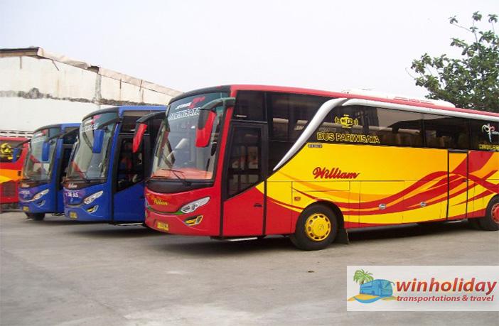 bus pariwisata tanggerang