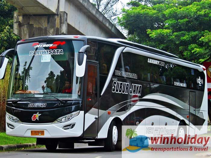 harga sewa bus besar 59 seats di Jakarta