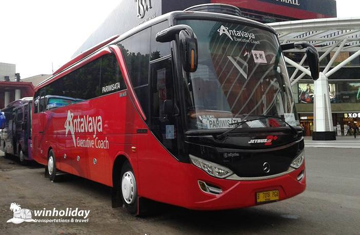 Big Bus Antavaya 59 seats
