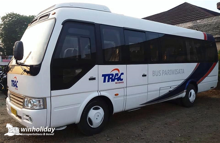 Eksterior Medium Bus Coster Trac 23 seats