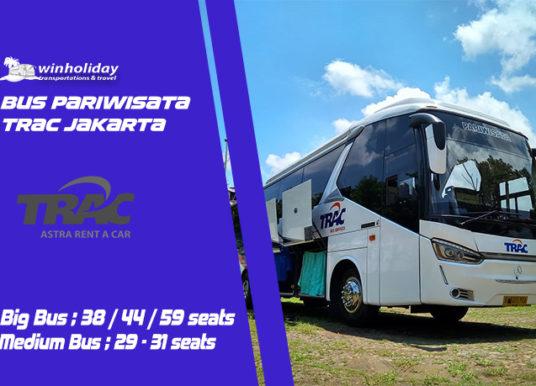 Mau Sewa Bus Pariwisata Trac Astra ? Cari tau Info lengkapnya Disini