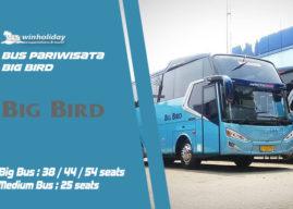 Agen Sewa Bus Pariwisata Blue Bird / Big Bird Jakarta Terbaik