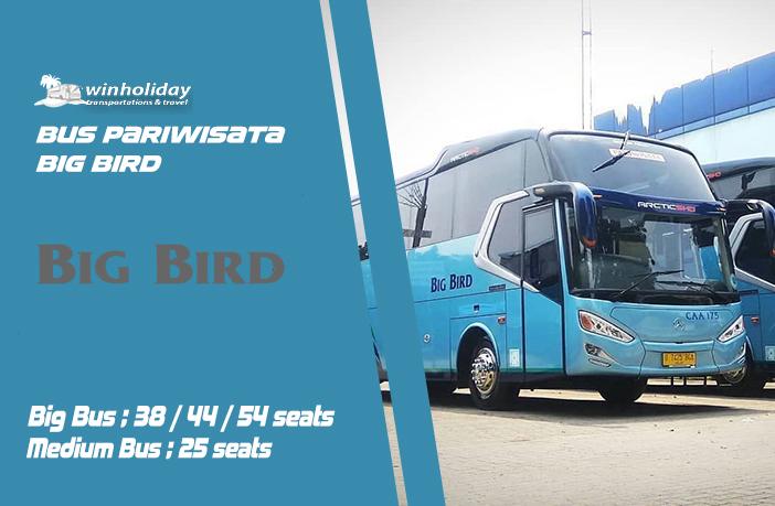 52 Gambar Denah Kursi Bus Medium Gratis Terbaru