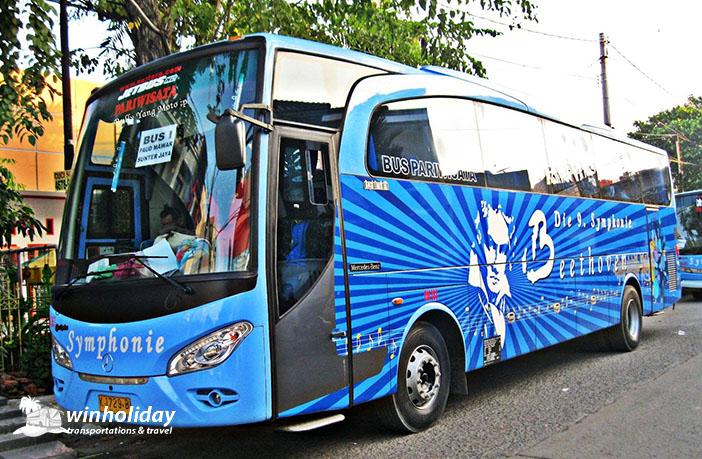 Bus pariwisata symphonie 59 seats a - winholiday