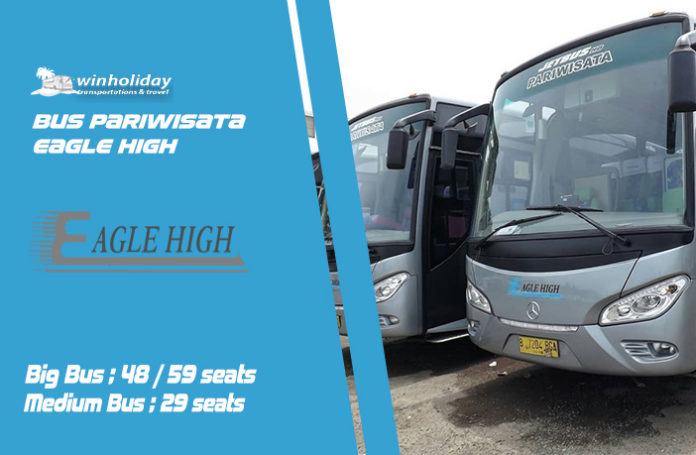 sewa bus eagle high