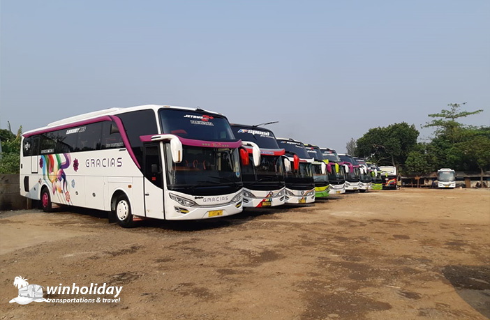 big bus pariwisata gracias 59 seats