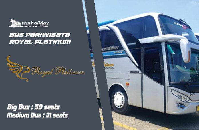 Bus royal platinum