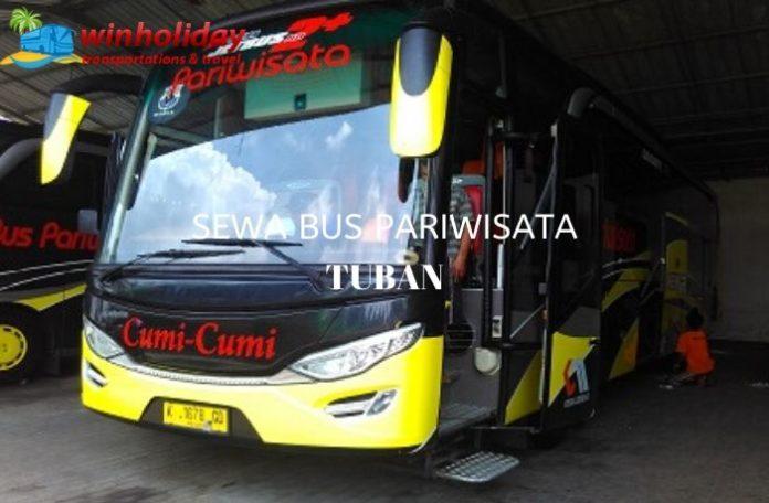 bus pariwisata di tuban